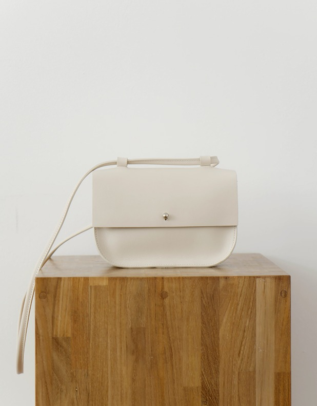 8276_Simple Yet Elegant Minimal Bag