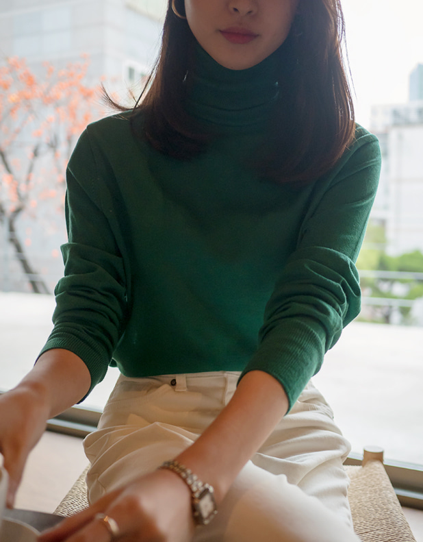 8758_Cash Turtleneck sweater